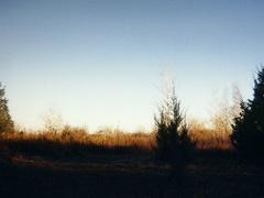 Scenery-Puckaway 06