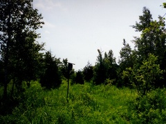 Scenery-Puckaway 10