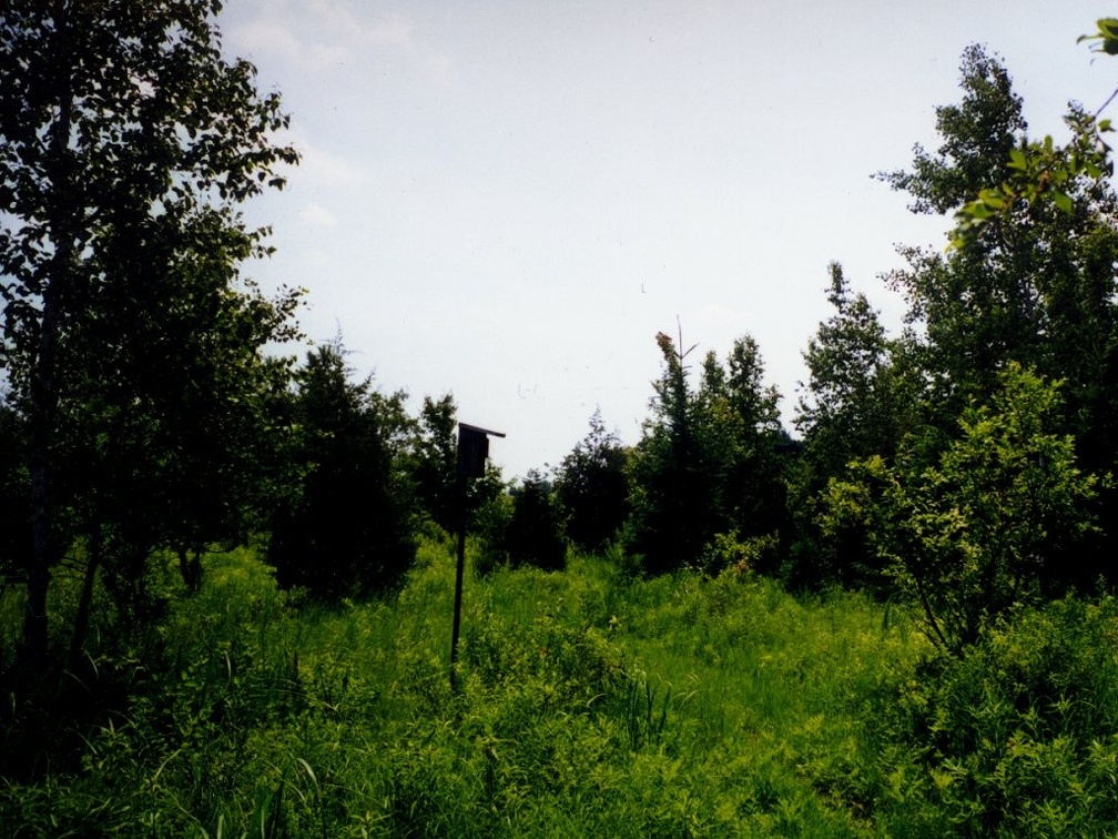 Scenery-Puckaway_10.jpg