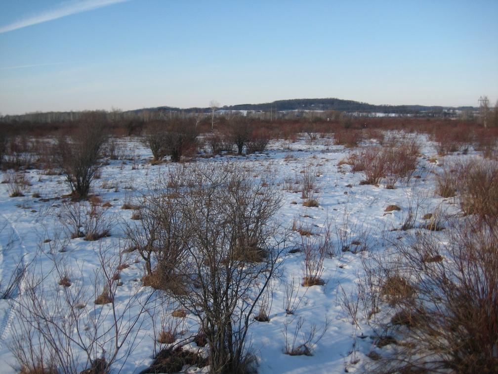 2010-01-31_165022.jpg